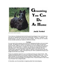 Grooming your Scottie
