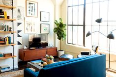 Blue sofa in living room with massive bookshelf filled with trinkets and books, Eames lounge chair, indoor plant and wood coffee table