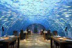 """Questo suggestivo ristorante si trova all'interno di un resort di lusso alle Maldive. Cinque metri sotto la superficie dell'acqua con 180 gradi di vista panoramiche sulla natura subacquea. """"Ithaa"""" (che significa 'madreperla' nella lingua maldiviana di Dihevi) serve cucina europea contemporaneaive"""