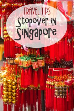 Singapore is a perfect city for a stopover. We loved to explore this city with the hop on hop off bus.