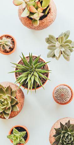 For more home inspiration, visit PureWow.com.