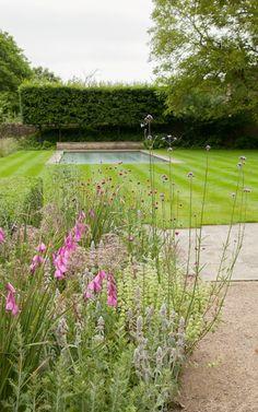 dan pearson landscape design / old rectory gardens, naunton gloucestershire Garden Yard Ideas, Love Garden, Water Garden, Home And Garden, Pond Design, Landscape Design, Garden Design, Dan Pearson, Formal Gardens