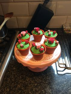 My little flower pot cakes :D