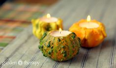 Turn festive autumn gourds into long-lasting ornamental gourd candle holders for fall table and holiday decorating. A sneak peek from the book, Garden Made.
