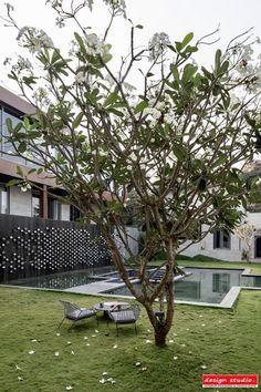 Felicitas: A Luxurious Villa In Goa Embracing Nature | Design Studio - The Architects Diary