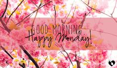 Good morning! Here's to a day full of smiles, wonder, and dwelling with our Maker. Happy Monday!
