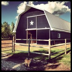 Amber Marshall barn at her farm Dream Barn, My Dream Home, Dream Job, Heartland Cast, Black Barn, Future Farms, Scenery Pictures, Country Barns, Amber Marshall
