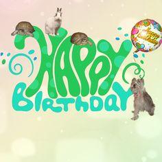 happy birthday cute