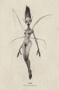 Fairies  by Audrey Benjaminsen, via Behance