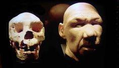 Homo Antecessor, considerada la especie homínida más antigua de Europa y probable ancestro de la línea Homo heidelbergensis - H. neanderthalensis. Vivió hace unos 900 000 años. Eran altos, fuertes, con rostro de rasgos arcaicos y cerebro más pequeño que el del hombre actual. Su morfología revolucionó la idea que se tenía hasta ese momento de la evolución de nuestra especie. Su capacidad craneal era  de 1.000 cc, sufrió una reestructuración  del neurocráneo, la mandíbula, los dientes y la…
