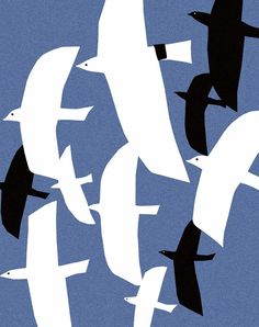 Desafinado: flying at night; ophelia pang art. #blueandwhite #birds #seagulls flying