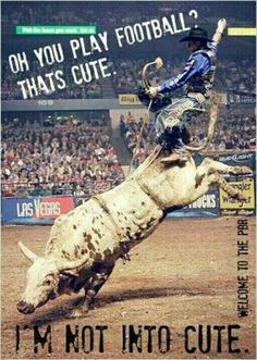 Rodeo. I don't think he's supposed to ride back there?????.............lol