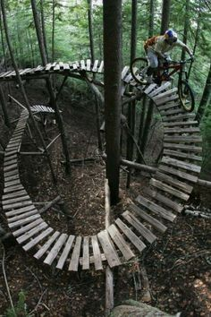 mountain bike plank bridge through the woods