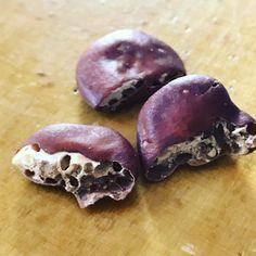 By kleintiereonline.de . Die Puffbohne sind vielseitig verwendbar. Ebenso sind die weichen Körner in feinen Salaten und feine Suppen ein Leckerbissen. Doch heute bei einen Frühsaat-Versuch ist festzustellen, dass auch Saatschädlinge sich an diesem eiweisshaltigen Produkt gütlich tun. Die Bohne wurden vor etwa 3 Wochen in einem Gartenzenter gekauft. Die Bohne wird dank dem hohen Eiweissgehalt auch als Fleischersatz gehandelt. . #bohne #puffbohne #eiweissersatz #leguminose #stickstoffbinder… Versuch, Plum, Fruit, Food, Beans, Lawn And Garden, Essen, Meals, Yemek