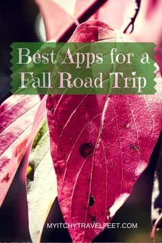 Our favorite travel apps for a scenic fall road trip.