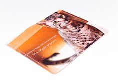 Striped Cat Wallet Recycled Paper Wallet with by HullStreetGreen, $8.00    Need an easy to find case for your cards and ID?  These one of a kind recycled paper wallets are perfect for purse organization or throwing in your pocket for a jog or trip to the store.  This wallet can securely hold an amazing 16 plastic cards or 20 paper cards and is still less than ½ an inch thick!  That means no bulky pockets forcing you to sit uncomfortably.
