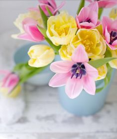 Gardening Hacks That Anyone Can Use Hanging Flowers, Flower Vases, Flower Arrangements, Rose Pictures, Great Pictures, Morning Pictures, Morning Images, Morning Quotes, Beautiful Morning Messages