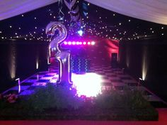 21st Birthday Party. Pink backdrop with starcloth roof over black and white dance floor, mirrorball and uplights.
