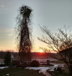 Winter sunset at Bella