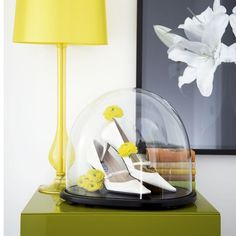 now THAT is shoe love!