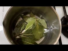 How To Make Oil, Health Remedies, Spinach, Benefit, Health Care, Beauty Hacks, Healing, Herbs, Homemade