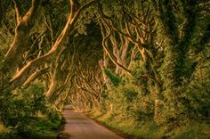 Game of Thrones 4 day itinerary through Northern Ireland