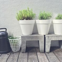 Afbeeldingsresultaat voor u elementen beton - Best Pins Outdoor Pots, Outdoor Gardens, U Element Beton, Gardening For Beginners, Gardening Tips, Dream Garden, Home And Garden, Pot Jardin, Pot Plante