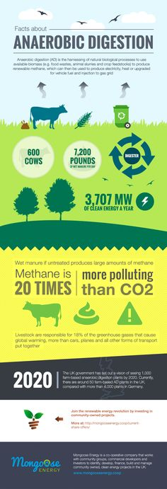 """Rediseño de infografía: """"Facts about anaerobic digestion"""" a project by manuelortiz. Domestika is the largest community for creative professionals. Anaerobic Digestion, Waste To Energy, Thriller Novels, Composting, Facts, Green"""