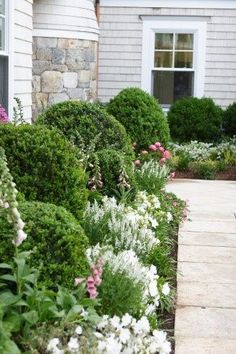 ideas about Foundation Planting on Pinterest