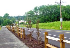 East Gate Greenway - wood guardrail and plantings between path and road