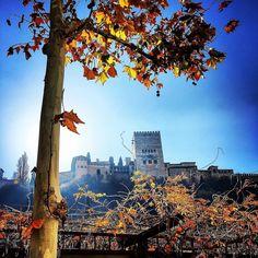 La #alhambra en #otoño #twitter