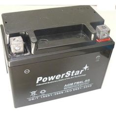 PowerStar PM4L-BS-F120010W1 Lawn Mower Battery for Snapper All Walk Behind Mowers Plus Extra Charger, As Shown