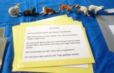 Download+Montessori+Katzen+Freiarbeit+Lernmaterial+von+Lernfabrik+auf+DaWanda.com