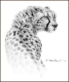 cheetah/tattoo - Google Search