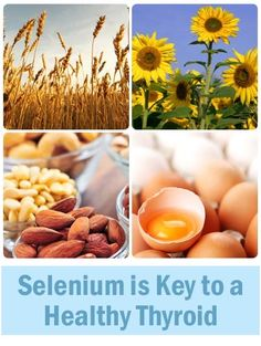 Top 10 Selenium Rich Foods & may treat or prevent cancer
