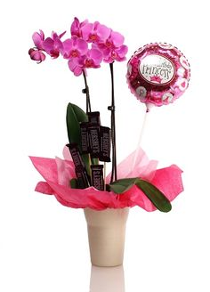 #Orchids make the perfect gift Orchid Planters, Orchid Care, Diy Home Decor,