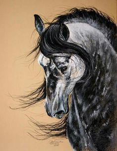 Horse painting by Paulina Stasikowska Horse Drawings, Animal Drawings, Art Drawings, Painted Horses, Pretty Horses, Beautiful Horses, Arte Equina, Horse Artwork, Horse Paintings