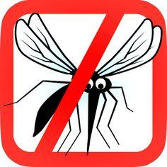 como hacer un mosquito de papel - Cerca amb Google