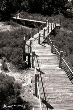 walkway on beach