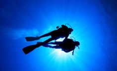 278 best cool stuff images on pinterest make it yourself cool start seeing the other two thirds of the world grab a padi open water gumiabroncs Images
