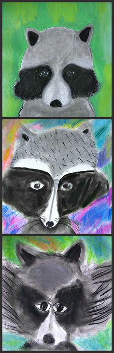 These Raccoon Portraits were drawn in charcoal and pastel chalks by a group of grader students, they created a remarkable unique effect dont you think. Animal Art Projects, Fall Art Projects, School Art Projects, Art Lessons For Kids, Art Lessons Elementary, Art Rose, 2nd Grade Art, Ecole Art, Kindergarten Art