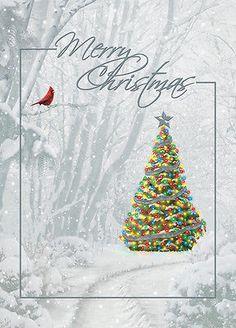 Merry Christmas - Box of 14 Christmas Cards #whitechristmas