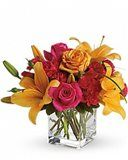 Send get well flowers from a real Baltimore, MD local florist. House of Arnold Florist has a large selection of gorgeous floral arrangements and bouquets. We offer same-day flower deliveries for get well flowers. Bright Flowers, Summer Flowers, Bright Colors, Fall Flowers, Flowers Garden, Fresh Flowers, Yellow Flowers, Flower Delivery Service, Anniversary Flowers