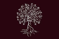 Olive tree vector logo concept by provector on @creativemarket
