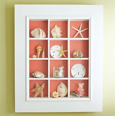 A display case presents the inner-self of the creator. With a look at the display case, you can know the person inside. There are DIY display case ideas. Seashell Display, Seashell Art, Seashell Crafts, Beach Crafts, Display Sea Shells, Seashell Projects, Diy Projects, Seashell Shadow Boxes, Shadow Box Display Case