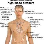 10 Herbal Remedies for High Blood Pressure