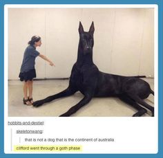 Lol Clifford went through a goth phases! Haha made me laugh! Funny Shit, Funny Cute, The Funny, Funny Memes, Funny Stuff, Funniest Memes, Funny Things, Haha, Funny Animals