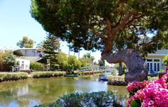 WANDER THEVENICE CANALS  Named after Italy's Venice comes araunchier, more hipster, more Californian counterpart. While in Los Angeles, don't miss strolling through the canals in Venice Beach. Enjoy a peaceful walk among the sunshine and flowers as boats float along the waterways.