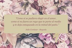 Che Negrita | Julio Cortazar - Rayuela #argentina #clasicos #rayuela #literatura #bookquotes