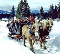 Kids too young to ski?  Here's a round up of great things to do in Tahoe with toddlers.